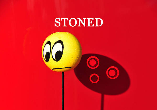 Stoned Poster featuring the photograph Stoned by David Lee Thompson