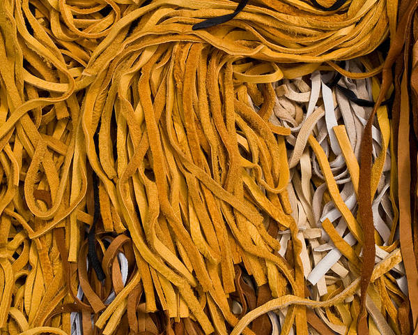 Leather Poster featuring the photograph Strands Of Gold by Walter Beck