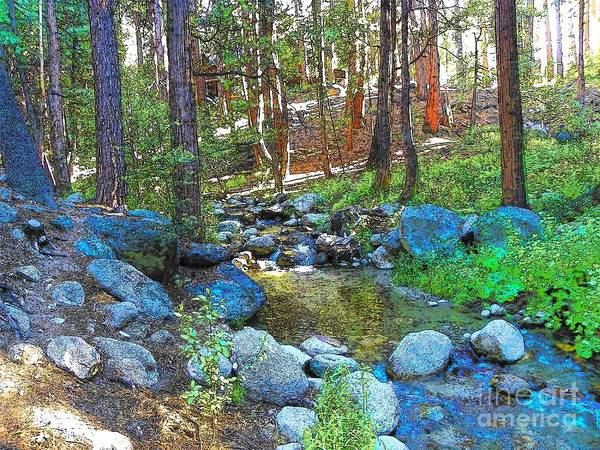 Idyllwild Poster featuring the photograph Strawberry Creek 1884 by Lisa Dunn