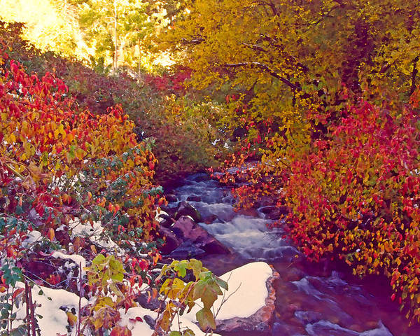 Stream Poster featuring the photograph Stream In Autumn by Steve Ohlsen