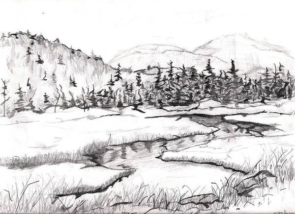 Landscape Poster featuring the drawing Stream by Katina Cote