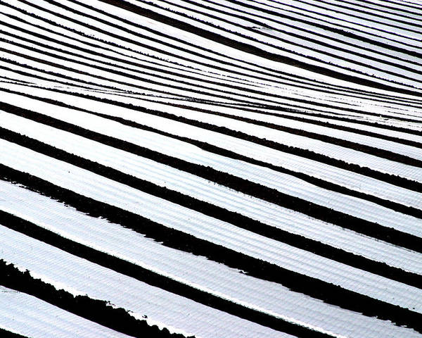 Photographer Poster featuring the photograph Stripy Land by Jez C Self