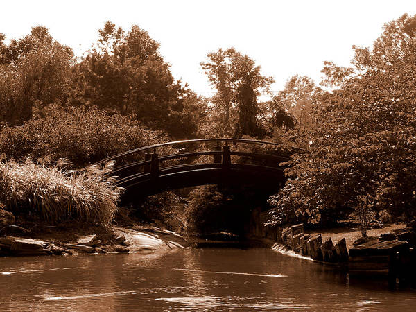Sepia Poster featuring the photograph Stroll Garden Bridge by Audrey Venute