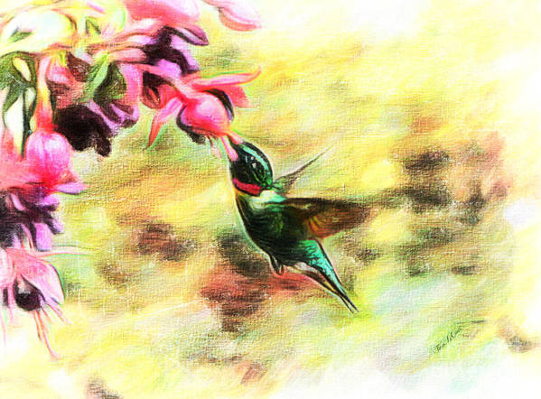 Ruby Throated Hummingbird Poster featuring the photograph Submerged Into Sweetness by Tina LeCour