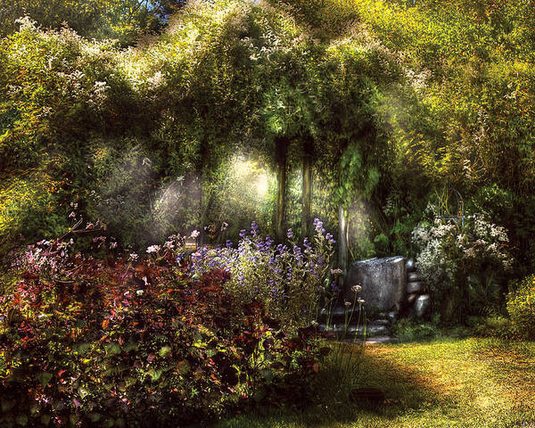 Savad Poster featuring the photograph Summer - Landscape - Eve's Garden by Mike Savad