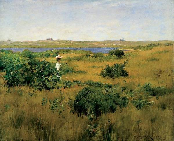 Long Island Poster featuring the painting Summer At Shinnecock Hills by William Merritt Chase