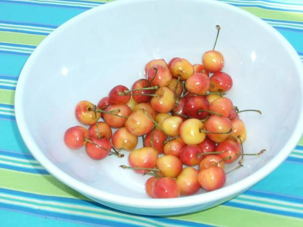 Cherries Poster featuring the photograph Summer Cherries by Nancy Ferrier