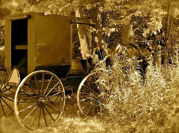 Amish Poster featuring the photograph Sunday Ride by Jennifer Addington