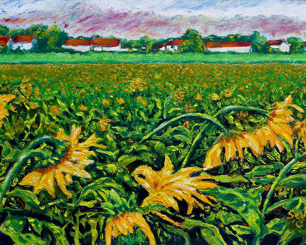 Landscape Poster featuring the painting Sunflower Farm by Robert Sako