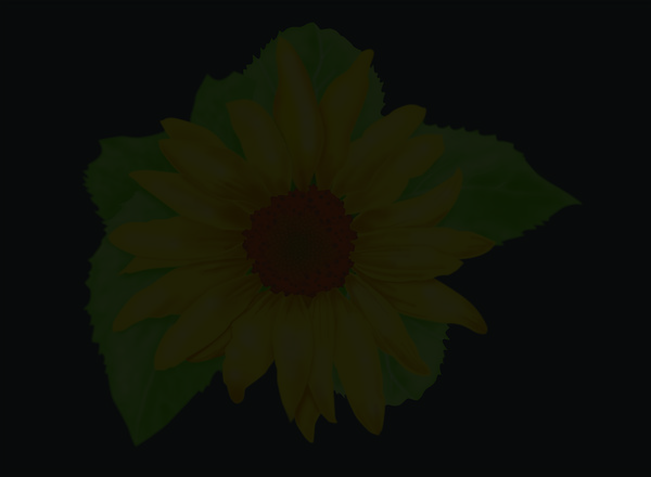 Wall Hanging Poster featuring the digital art Sunflower On Black Background by Larry Ryan