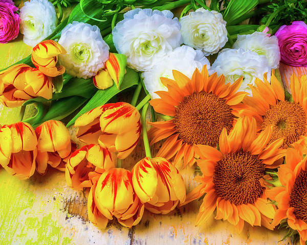 Mood Poster featuring the photograph Sunflowers Tulips by Garry Gay