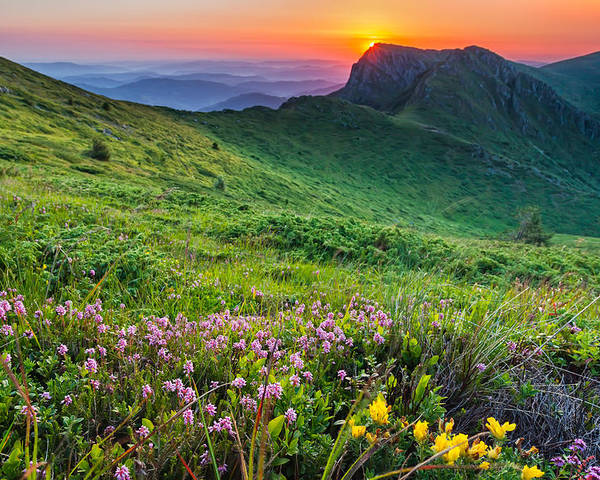 Balkan Mountains Poster featuring the photograph Sunrise Behind Goat Wall by Evgeni Dinev