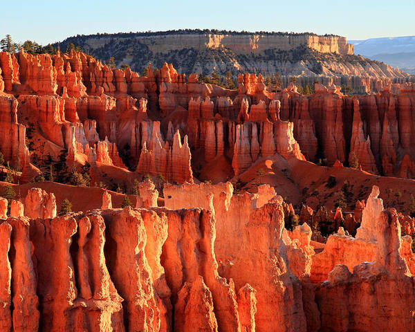 Bryce Poster featuring the photograph Sunrise Hoodoos In Bryce Canyon by Pierre Leclerc Photography