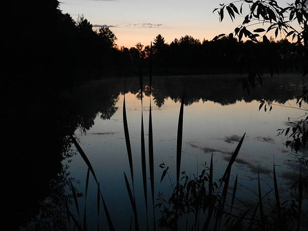 Sunrise Poster featuring the photograph Sunrise On Pond by Dennis Leatherman