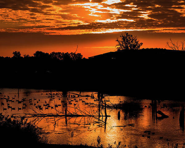Sunrise Poster featuring the photograph Sunrise Over A Pond by Maxwell Dziku
