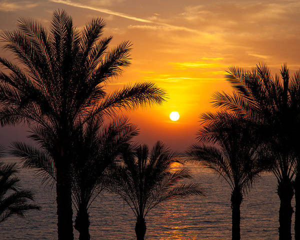 Background Poster featuring the photograph Sunrise Over The Red Sea by Jane Rix