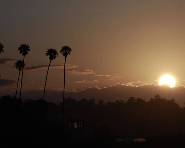 Sunrise Poster featuring the photograph Sunrise So. California by Nick Mattea