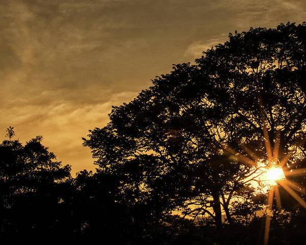 Sunset Poster featuring the photograph Sunset And Trees - San Salvador by Totto Ponce