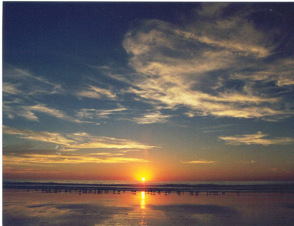 Sunset Poster featuring the photograph Sunset At Moonlight Beach by PJ Cloud