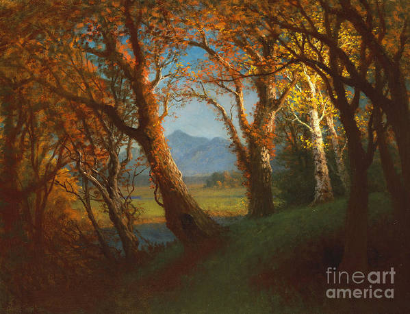 American; Landscape; West; Western; Wood; Forest; Mountain; Mountains; Plains; Prairie; Dusk Poster featuring the painting Sunset In The Nebraska Territory by Albert Bierstadt