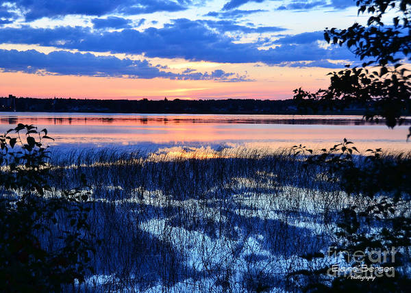 Sunset On Lake Poster featuring the photograph Sunset On Porcupine Lake by Elaine Berger