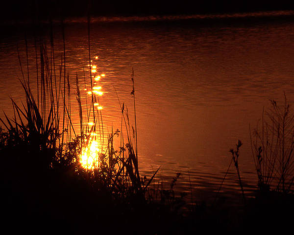 Sunset Poster featuring the photograph Sunset On The Water by Barry Shaffer