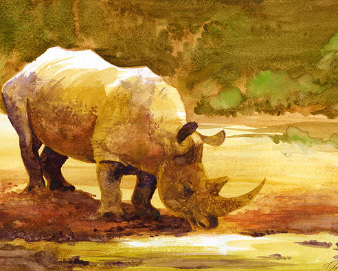 Watercolor Poster featuring the painting Sunset Rhino by Brian Kesinger