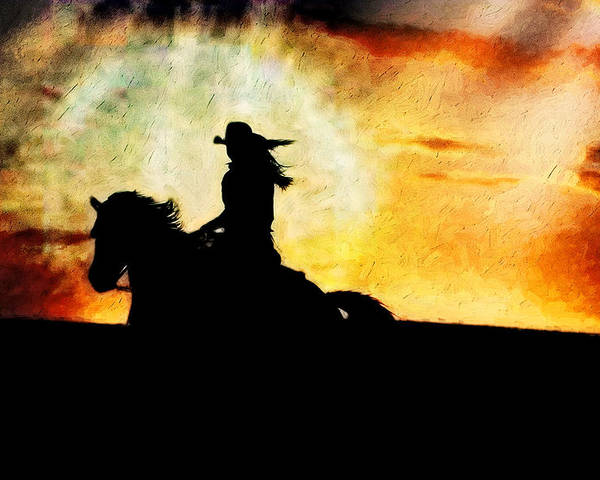 Horse Poster featuring the photograph Sunset Rider by Nick Sokoloff