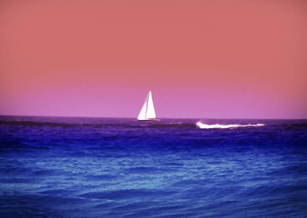 Sunset Poster featuring the photograph Sunset Sailboat by Bill Cannon