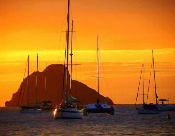 Sunsets Poster featuring the photograph Sunset Sails by Karen Wiles