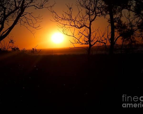 Poster featuring the photograph Sunset Summer by Biz Bzar