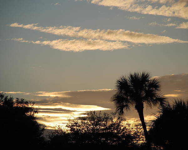 Clouds Palm Trees Poster featuring the photograph Sunsets In The West by Rob Hans