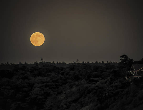 Black Brook Shop Poster featuring the photograph Supermoon by Black Brook Photography