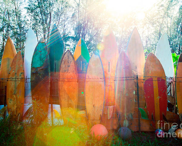 Surfboard Poster featuring the photograph Surfboards Sun Flare by Monica and Michael Sweet
