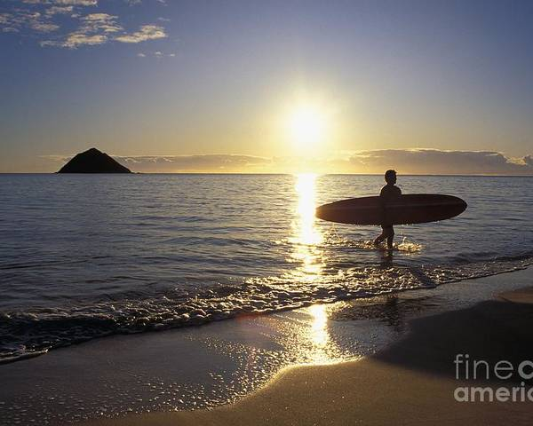 Ali O Neal Poster featuring the photograph Surfer At Sunrise by Ali ONeal - Printscapes