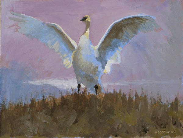 Bird Nature Tonal Purple Swan Lake Mist Poster featuring the painting Swan by Robert Bissett