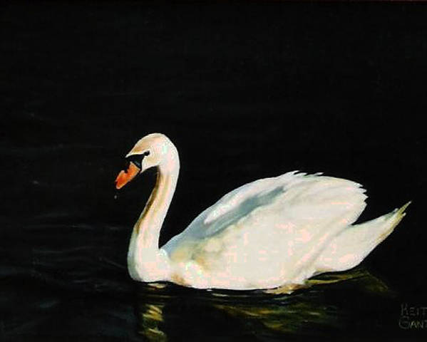 Swan Poster featuring the painting Swany River by Keith Gantos