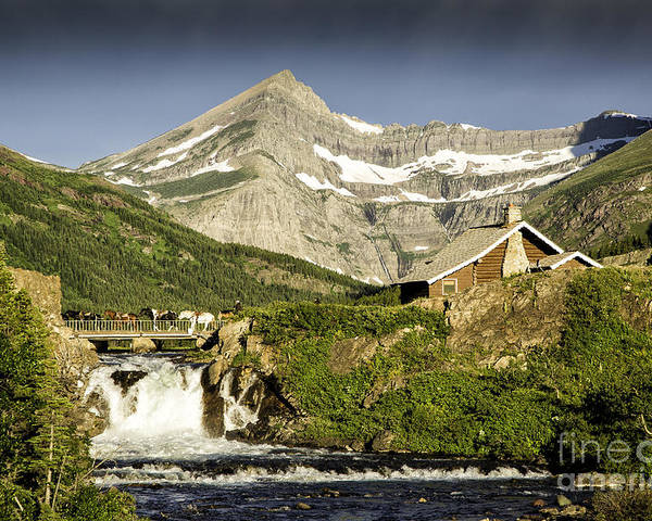 Glacier Poster featuring the photograph Swiftcurrent Falls Glacier Park 1 by Timothy Hacker