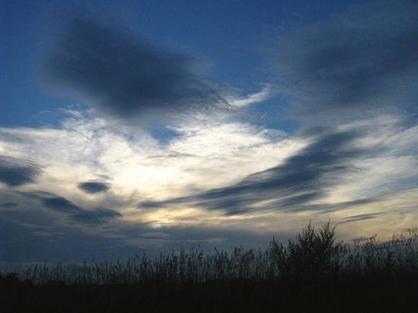 Sky Poster featuring the photograph Swirling Skies by Rhonda Barrett