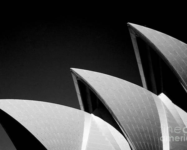 Sydney Opera House Iconic Building Black And White Monochrome Poster featuring the photograph Sydney Opera House by Sheila Smart Fine Art Photography