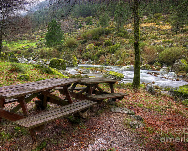 Autumn Poster featuring the photograph Tables By The River by Carlos Caetano
