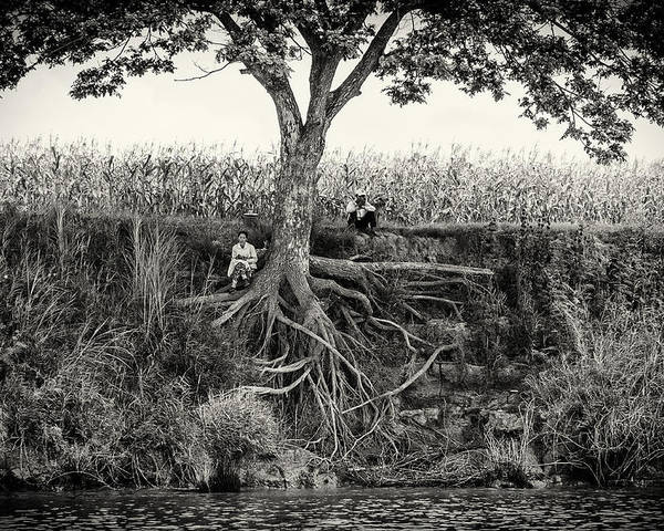 Tree Poster featuring the photograph Taking A Moment by Nichon Thorstrom