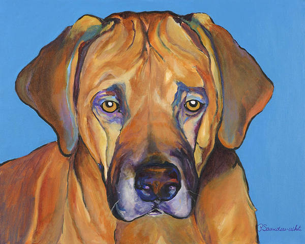 Rhodesian Ridgeback Dog Ridgeback African Colorful Orange Gold Yellow Red Poster featuring the painting Talen by Pat Saunders-White