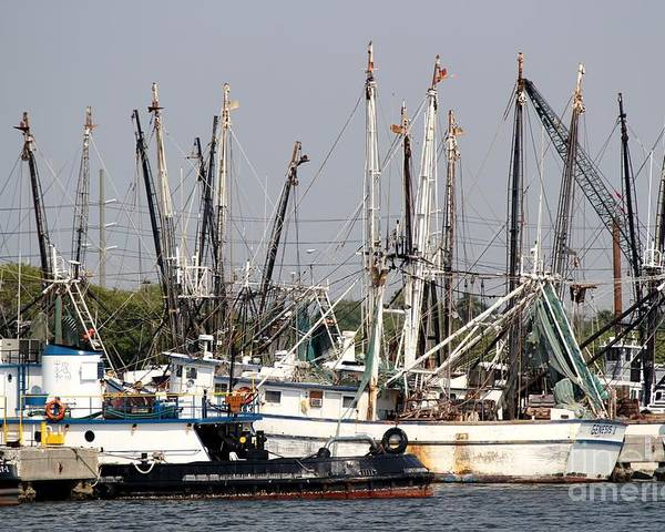 Shrimp Boats Poster featuring the photograph Tampa Shrimp Boats by Theresa Willingham