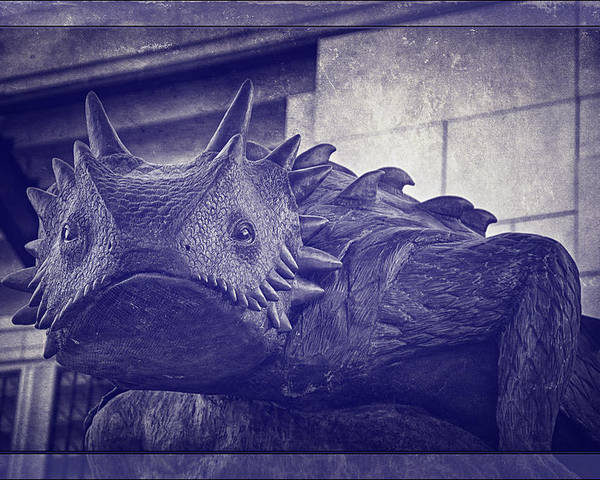 Joan Carroll Poster featuring the photograph Tcu Horned Frog Purple by Joan Carroll