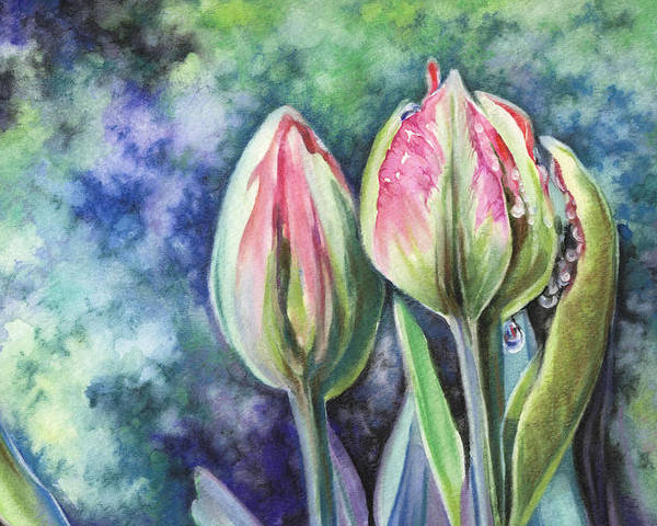 Tulip Poster featuring the painting Tears by Natasha Denger