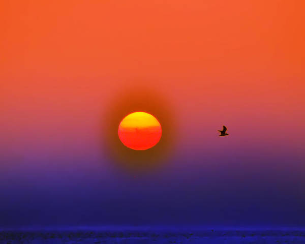 Sunrise Poster featuring the photograph Tequila Sunrise by Bill Cannon