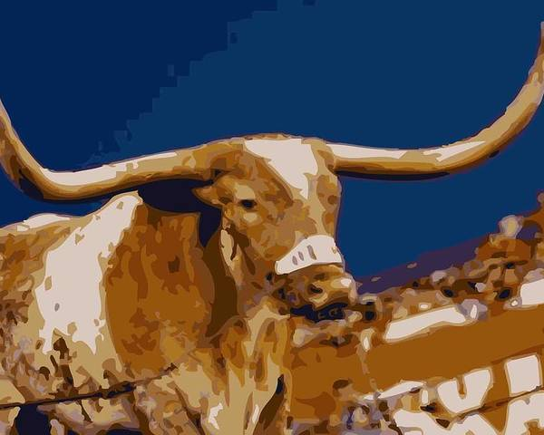 Capitol Of Texas Poster featuring the photograph Texas Bevo Color 16 by Scott Kelley