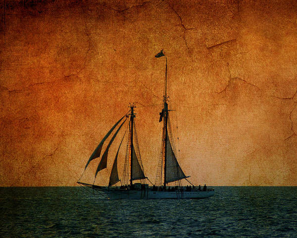 The America Poster featuring the photograph The America In Key West by Susanne Van Hulst