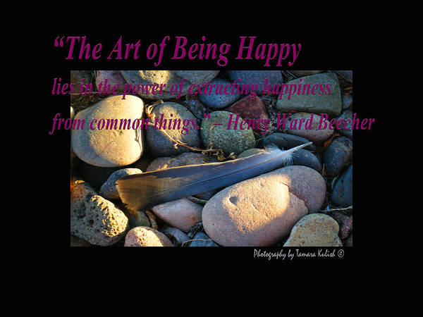 Arizona Poster featuring the photograph The Art Of Being Happy by Tamara Kulish